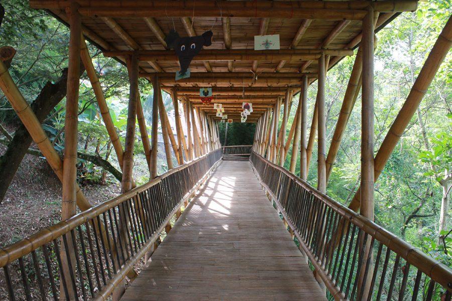 Die Brücke<br /><em>Meine Geschichte</em>