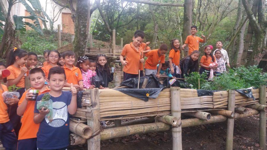 Umweltbildung in der Schule