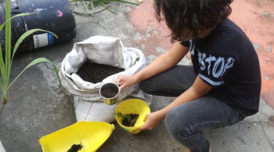 Umweltbildung von Zuhause