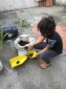 Umweltbildung Colegio (9)